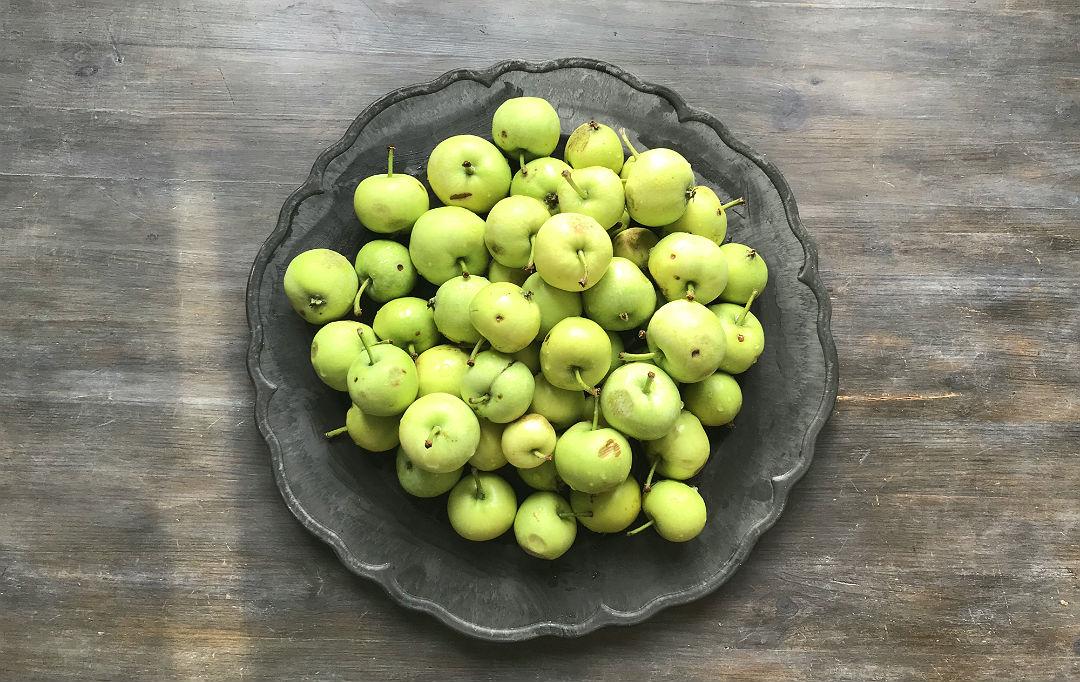 małe zielone jabłuszka