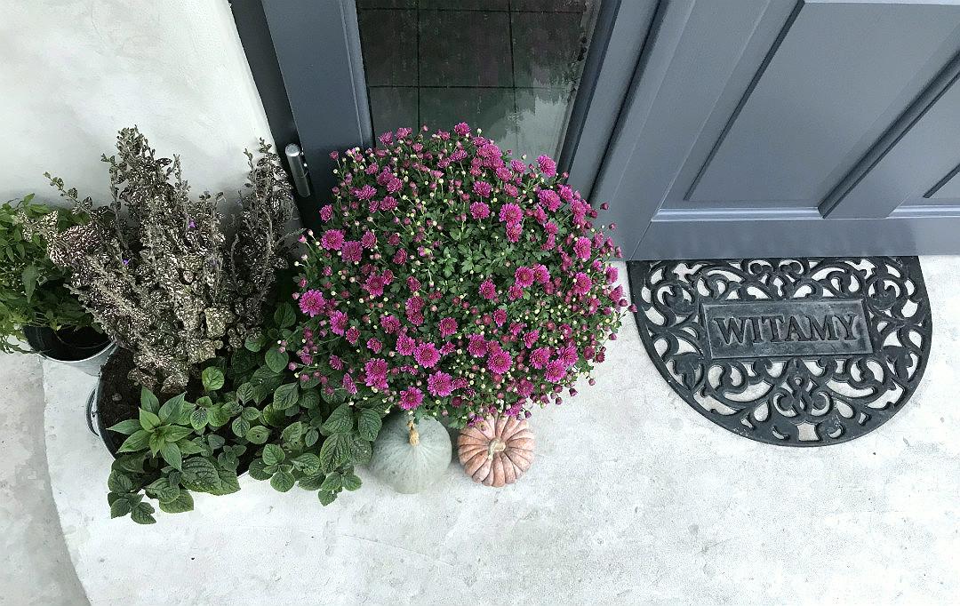 wycieraczka witamy jesienne ozdoby dekoracje kwiaty jesienny ogród