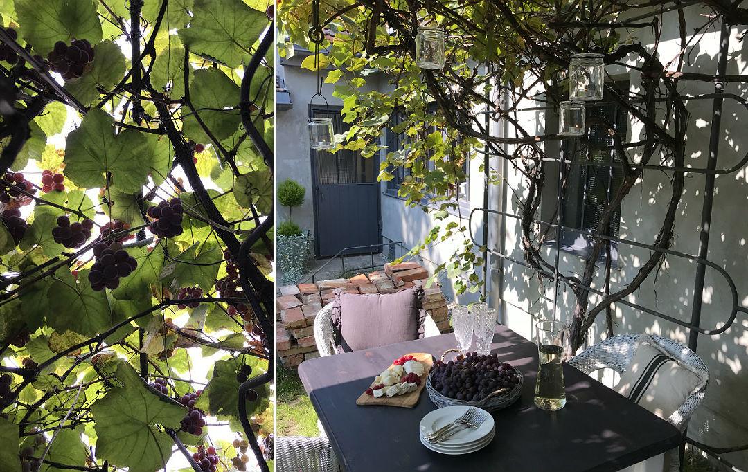 letnie posiłki w ogrodzie na świeżym powietrzu