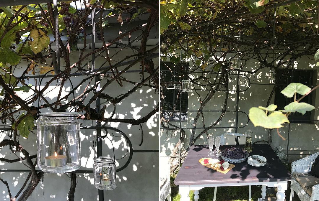 Magiczny ogród winogron letnie przyjęcie w ogrodzie