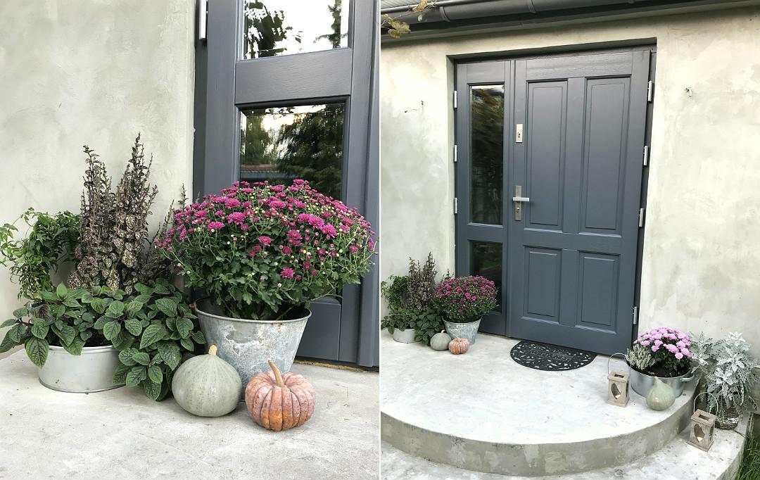 jesienne dekoracje przed dom chryzantemy, biały wrzos, dyńki, niecierpek, ozdobne pokrzywowe, ocynkowane balie