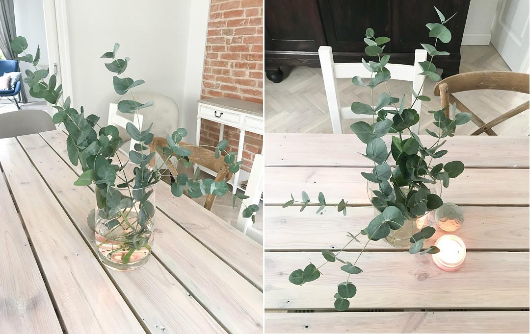 ozdobne liście w wazonie zamiast kwiatów eukaliptus