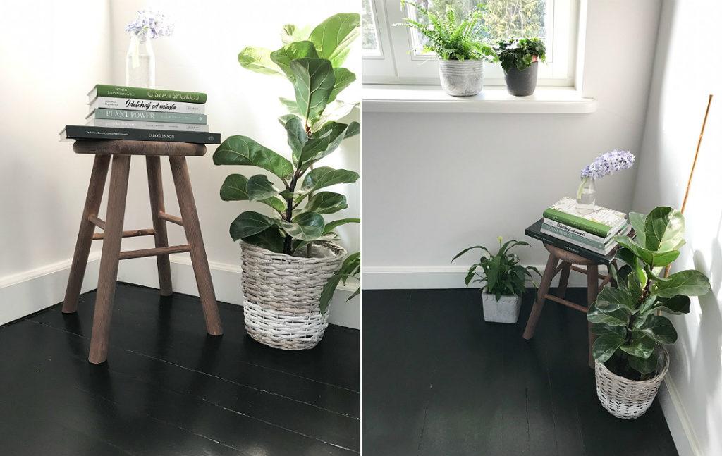 stołek DIY książka O roślinach rośliny domowe kwiaty w domu