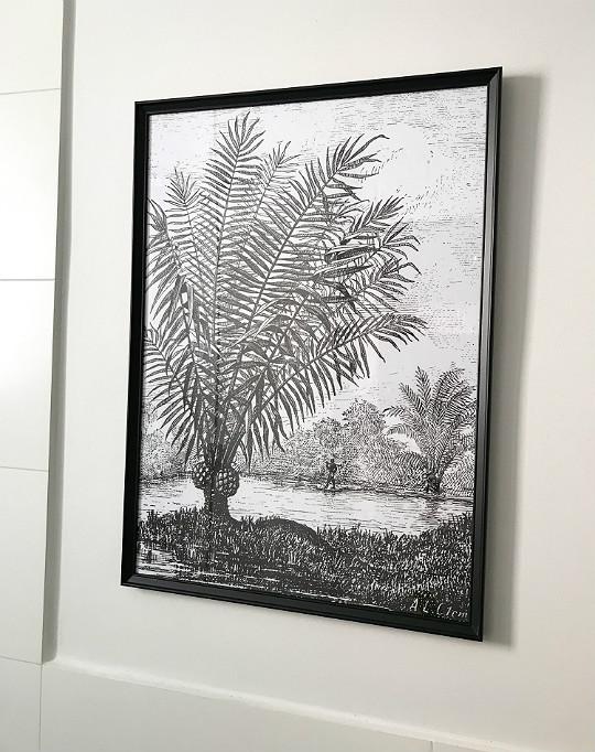plakat obraz w łazience do łazienki tropikalny exotic