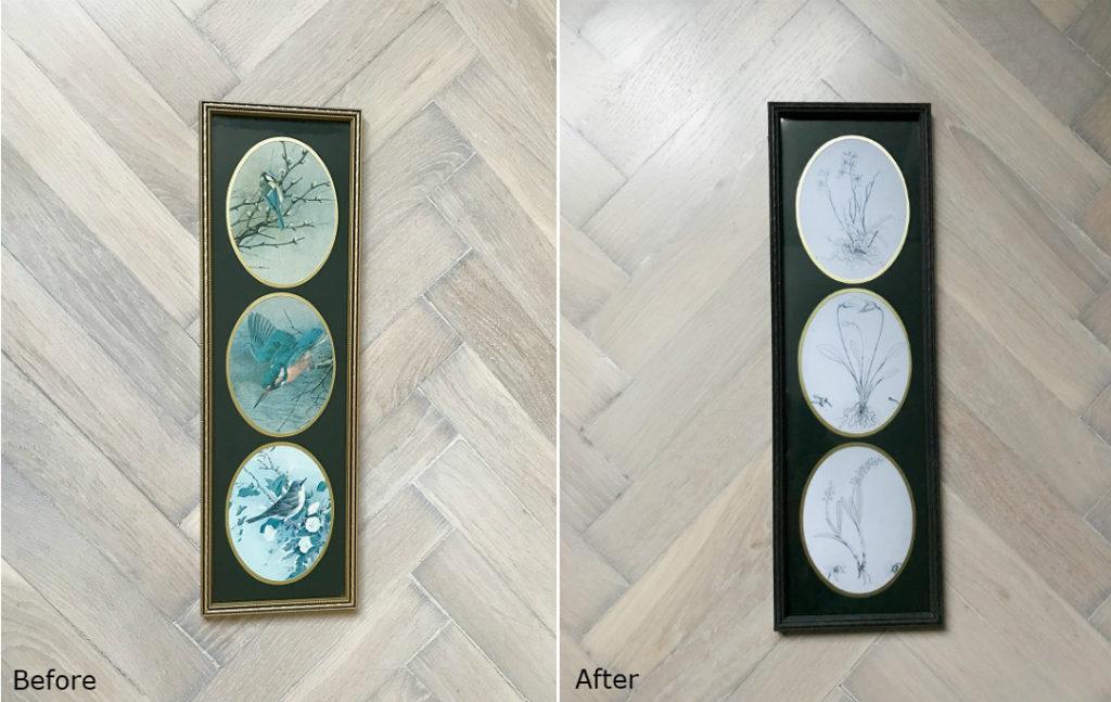 przeróbki diy jak przerobić starą ramę pomysł na ścienną dekorację ryciny motywy roślinne botaniczna ramka przed i po