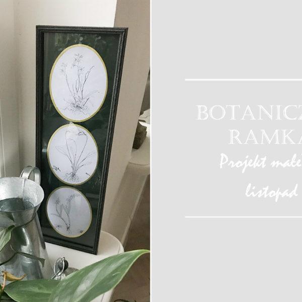 botaniczna ramka zrób to sam multiramka przeróbki roślinne plakaty ryciny