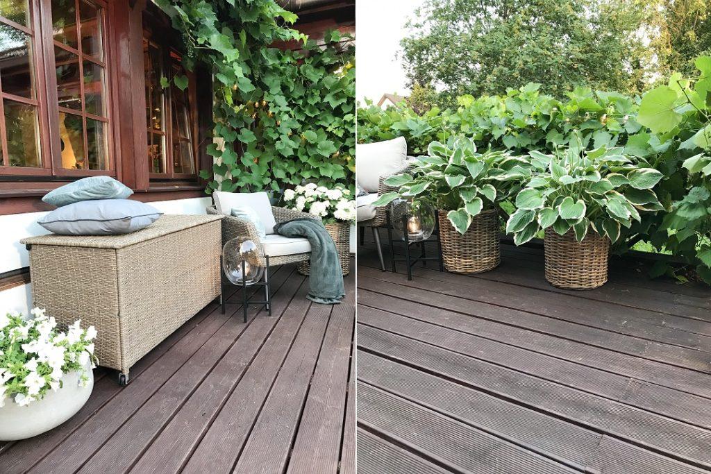 skrzynia na poduszki, taras, hosty, funkia, rośliny na taras, meble na taras, tarasowe dekoracje, kwiaty na taras, drewniany taras