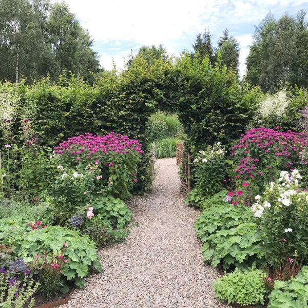 ogród Bellingham, ogród angielski, ogród w stylu angielskim, ogród na kaszubach, kaszuby co zwiedzać, atrakcja na Kaszubach, inspiracje ogrodowe, parter ogrodowy