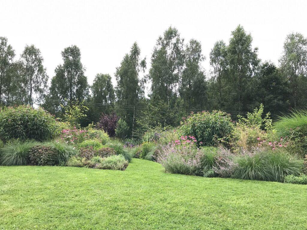 ogród bellingham, ogród preriowy, preria, ogród w stylu preriowym, ogród preriowy kaszuby, ogród pokazowy, ogród dla pszczół i motyli