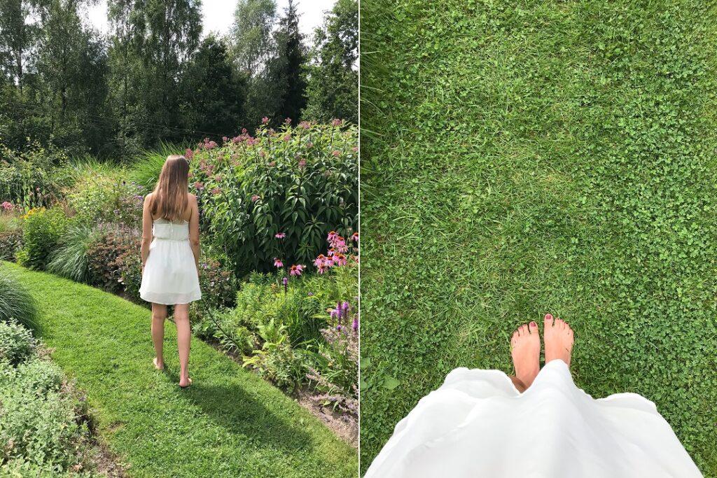 na boso, ogród preriowy, w ogrodzie